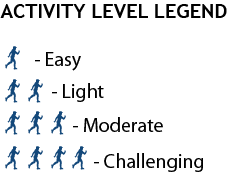 Activity Level Legend